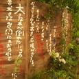 070516kokubara_173yagyu