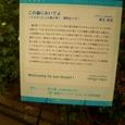 070516kokubara_179yagyu
