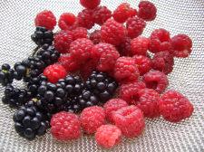 070710berry1